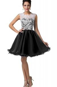 Cap-sleeved A-line Lace Bodice Short Dress